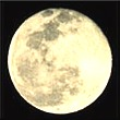 Full Moon Tarot Reading to awaken the senses and combat those high emotions!
